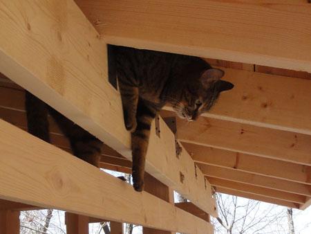 新しい薪小屋6
