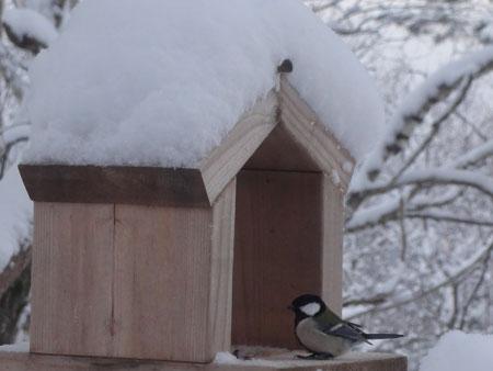 起きたら 大雪!2