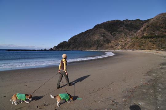 000海岸散歩