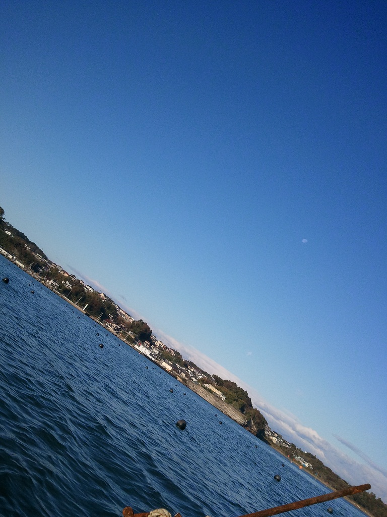 2012-11-03074801_1.jpg