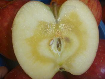 江刺りんご
