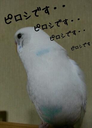 fc2_2014-02-19_23-16-35-543.jpg