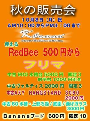 1008_20120926143808.jpg