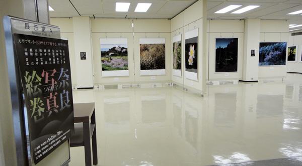奈良写真絵巻2013