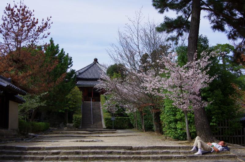 法隆寺 西円堂と眠る外人さん