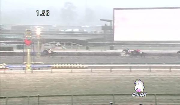 1月14日中山競馬場4R 大雪その2