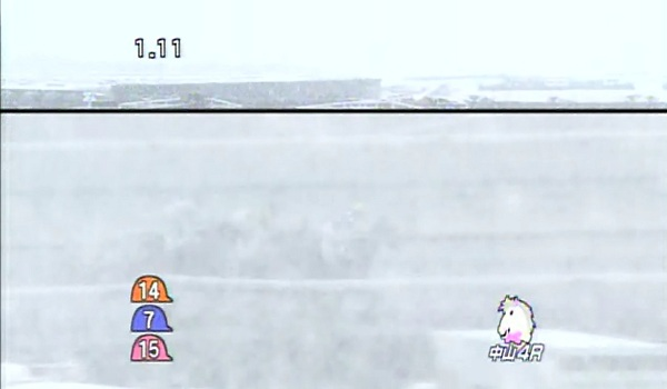 1月14日中山競馬場4R 大雪その1