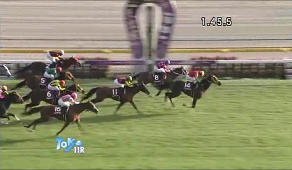 Fucyuhinba_Stakes_cap.jpg