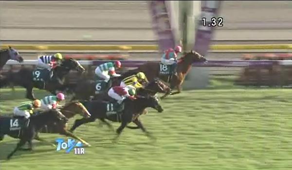Fuji_Stakes_cap.jpg