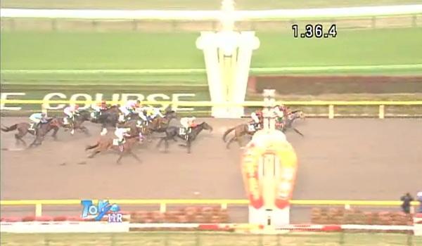 Musashino_Stakes_cap.jpg