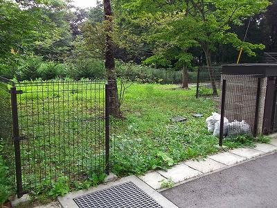 s-プリムーラ公園草刈2 (2)