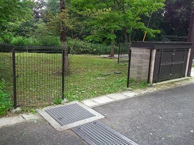s-プリムーラ公園草刈2 (5)