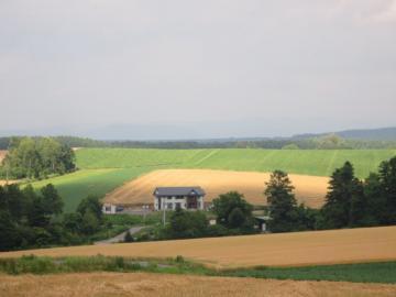 丘の風景3