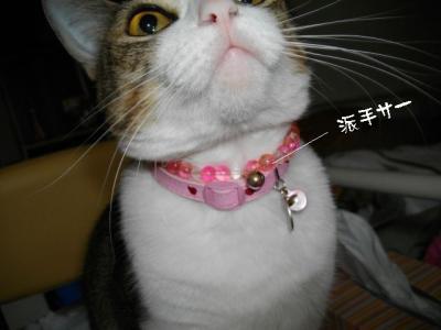 すりすり娘02