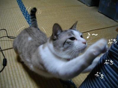 仲良し弐組02