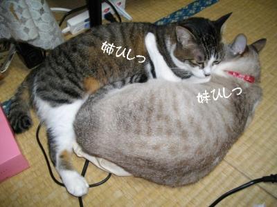 仲良し弐組06