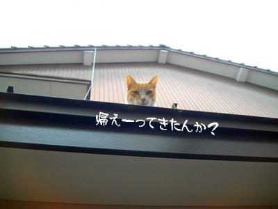 仲良し弐組07