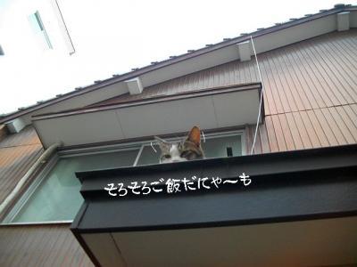 仲良し弐組09