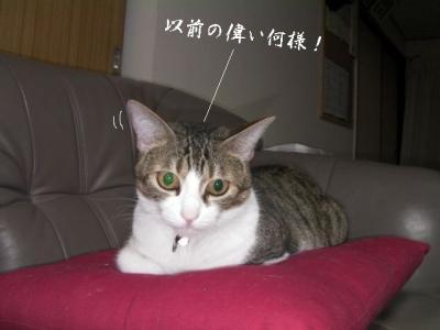 仲良し壱組03