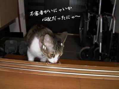 仲良し壱組05