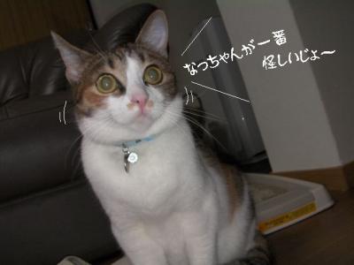 仲良し壱組06