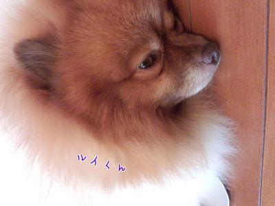 WKtPQWfnwnM02dY.jpg