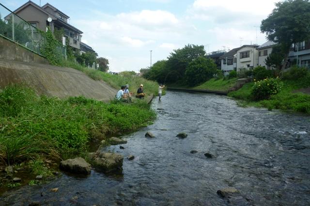 20120930_02_Kerchief_san.jpg