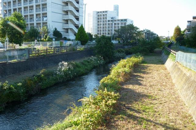 20121019_07.jpg