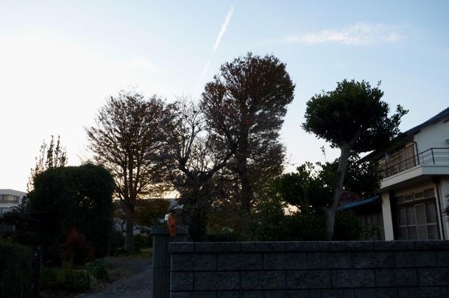 20121125_O_9.jpg
