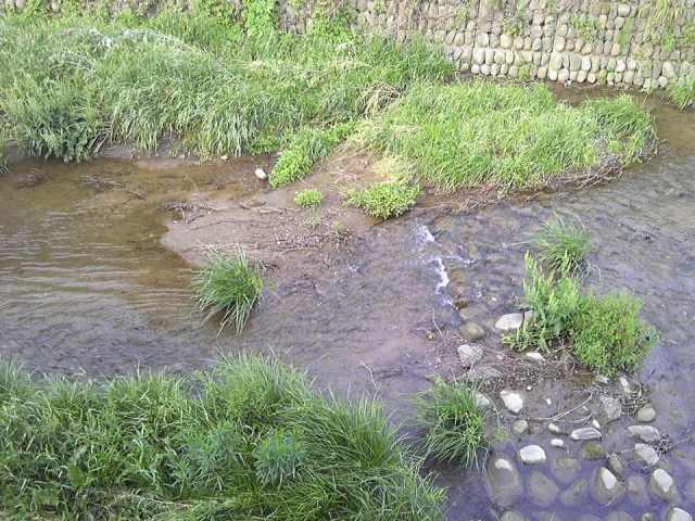 2012_0520_river_2.jpg