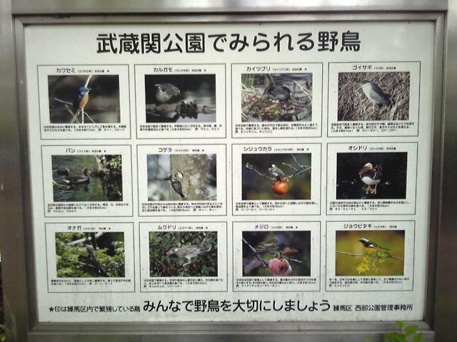 2012_0520_tori.jpg