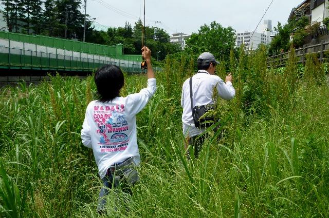 2012_0603_02.jpg
