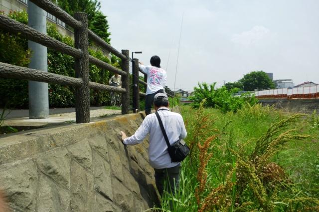 2012_0603_03.jpg