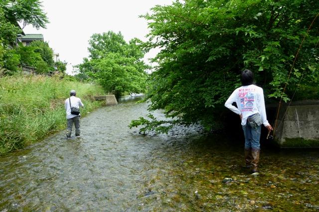 2012_0603_08.jpg