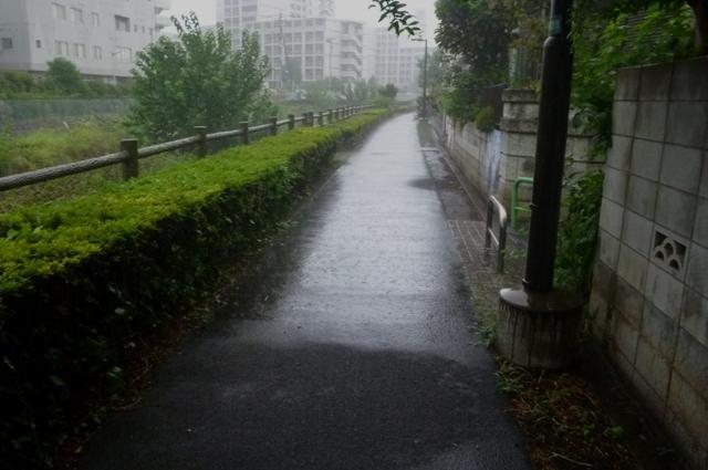 2012_0902_10.jpg
