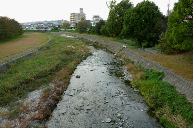 2012_1106_Setogawa_4.jpg