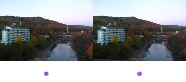 2012_1127_Shonaigawa.jpg