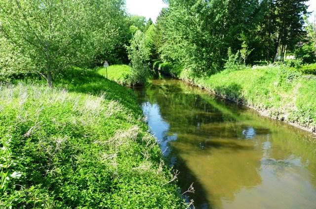 5_river.jpg