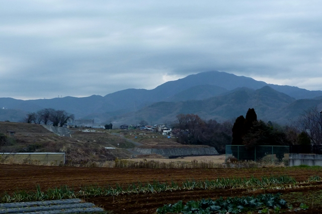 Tanzawa_2012_1221.jpg