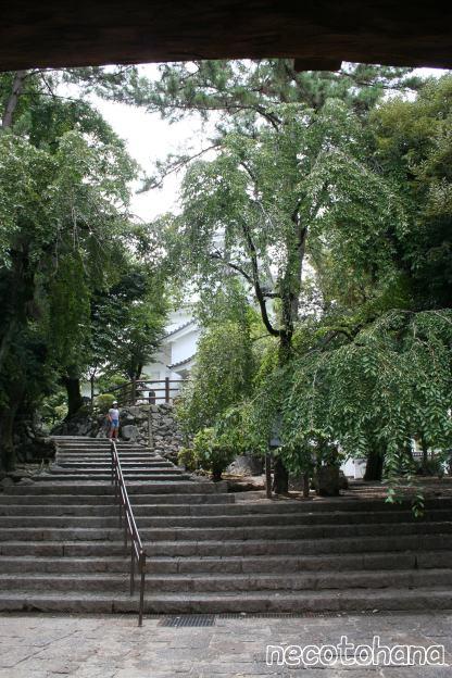 IMG_9885大垣城4