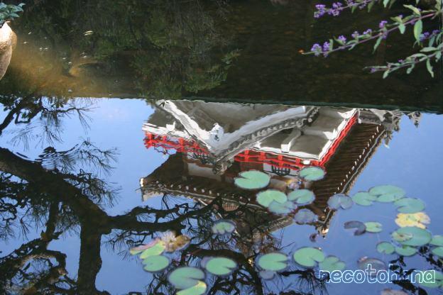 IMG_0620清州城4