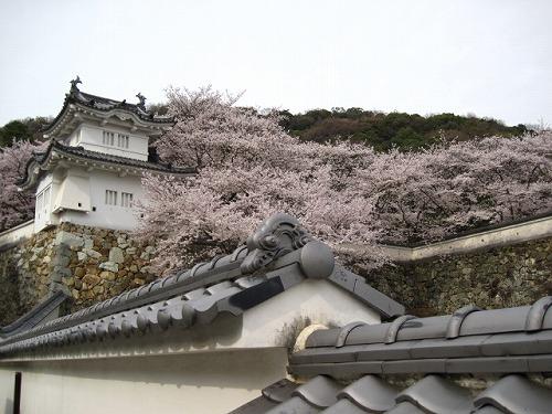 2013春☆播州龍野