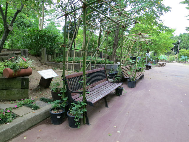割り竹支柱のみどりのベンチ