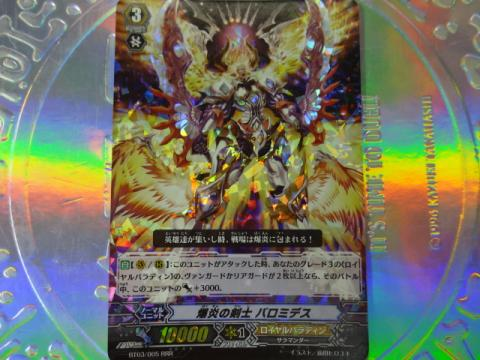 DSC01546_convert_20121218132629.jpg