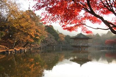 紅葉の季節0922