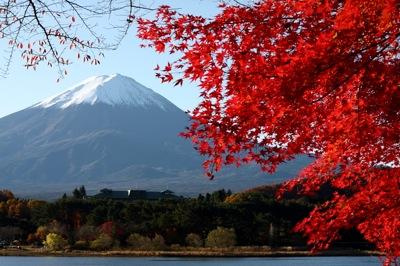 富士山と紅葉1031