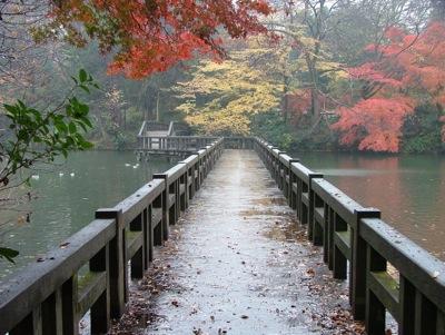 Japan-Bridge.
