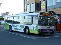 P1030556.jpg