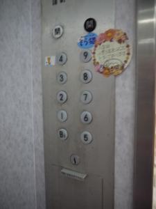 そら猫 エレベーター内
