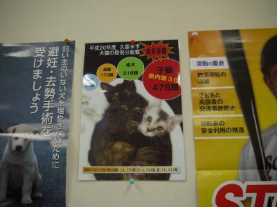 動物管理センターの掲示物